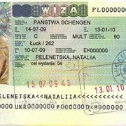 Мультивиза Польша 1 год фото