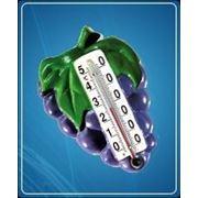 Термометр Виноград фото