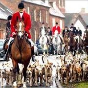 Охота в Англии цена фото