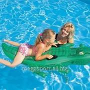 Плавательные принадлежности #41010 фото