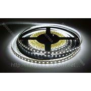 LED лента SMD 3528, герметичная, 120 шт/м, белая фото