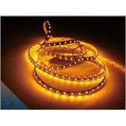 Светодиодная LED лента 3528 IP33 60 диодов в метре фото