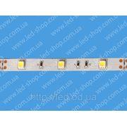 Светодиодная лента FLT 6 фото