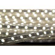 Светодиодная лента Led SMD 5050 60шт/м IP67 220В фото
