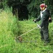 Трудоустройство в Польше Разнорабочие на кошение травы фото
