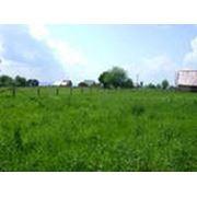 Участки земельные для огородничества фото