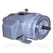 Электродвигатель 0,3 кВт 1000 об П21 220/220 В IM3601 фото