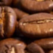 Экспортные поставки продуктов питания фото