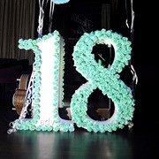 """Аренда декорации цифра """"18"""" фото"""