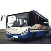 Автобус междугородный среднего класса ГолАЗ-4244 фото