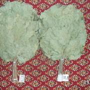 Дубовый Эксклюзивный веник для бани и сауны фото
