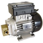 Насос для перекачки масла EA-88 (0.74 кВт) 220 В, 20-25 л/мин фото