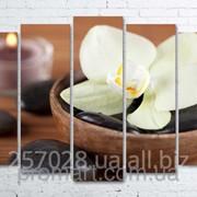 Модульна картина на полотні Біла орхідея код КМ100150(132)-098 фото