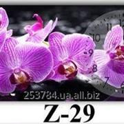 Часы Z-29, 35х80 фото