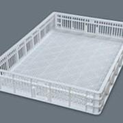Выводной лоток на 150 куриных яиц для инкубатора Petersime, Pas Reform, Hatchtech, фото