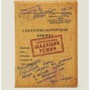 Обложка Для Паспорта Щедящий Режим Пластик фото