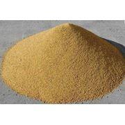 Шрот кукурузный фото