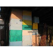 Пенопластовые улики 10 рамочные рута Ульи из пенопласта фото