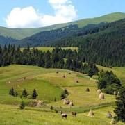 Экскурсии по Западной Украине. Жемчужины Закарпатья. фото