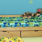 """Одноярусная кровать """"Ирель"""" фото"""