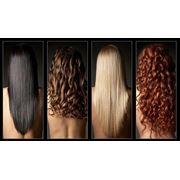 HAIR SERVICES-Ledies Haircut Short фото