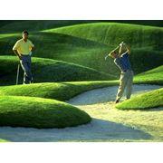 Гольф-Асоциация гольфа Республики Молдова фото