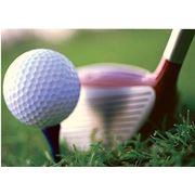 Обучение игре в гольф в Молдове фото