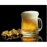 Оборудование для производства пива фото