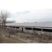 Ферма на продажу в Молдове фото