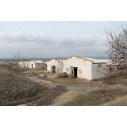 Ферма животноводческая в Молдове продажа фото
