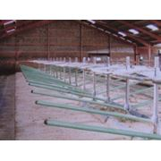 Ограждения для крупного рогатого скота из стальных труб фото
