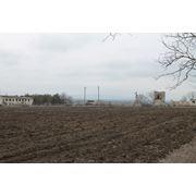 Se vinde ferma in Moldova фото