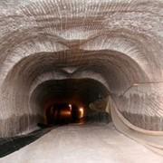 Концентрат минеральный Галит высший сорт тип С фото