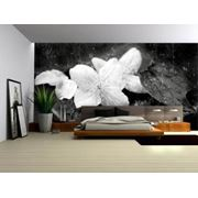 Полы и потолки 3D фото