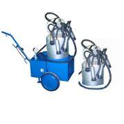 Аппарат доильный для коров (тандем) АД-01-Т фото