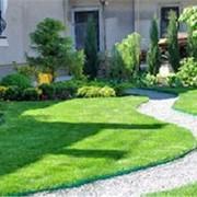Озеленение, создание газонов, склонов, подпорных стенок фото