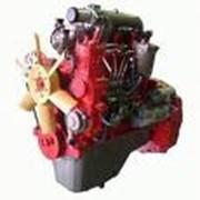 Запчасти к двигателям ММЗ Евро-1, Евро-2 Минского моторного завода фото