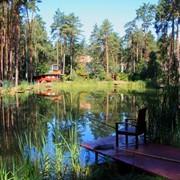 Рыбная ловля, озеро фото