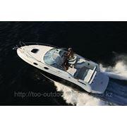 Спортивно-круизный катер Sea Ray 255 Sundancer/2013г. фото