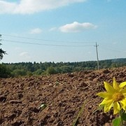 Аренда земли, Земельные участки, Кадастровые номера, Приватизация Донецк и область, Землеотводы фото