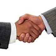 Услуги в сфере кадрового делопроизводства и штатного расписания фото