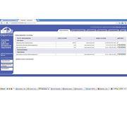 Система дистанционного учета работы медицинских представителей (СРМ) (СРС) фото