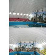 Воздухоопорное сооружение для дельфинария. фото
