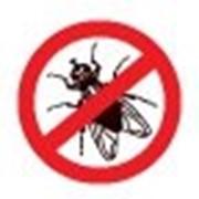 Средство для уничтожения тараканов, клопов, комаров. Николаев.