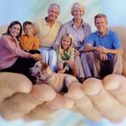 Семейная программа страхования. фото