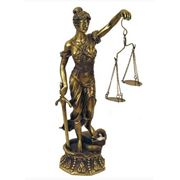 Представительство в хозяйственном суде фото
