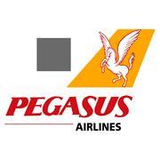 Продажа авиабилетов а/к Pegasus по низким ценам фото