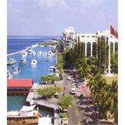VIP - Туры на Мальдивы фото
