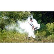 Уничтожение насекомых - дезинсекция фото