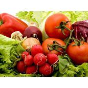 Хранение плодоовощной продукции в холодильниках фото